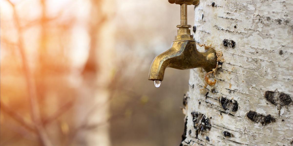 Kraan met water