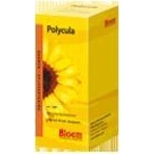 Bloem Natuurproducten Polycula afbeelding