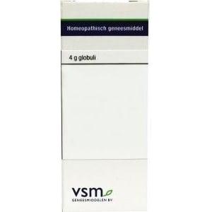 VSM Thuja occidentalis C30 afbeelding