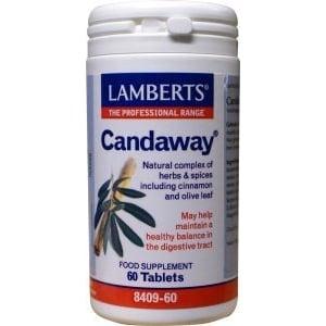 Lamberts Candaway afbeelding