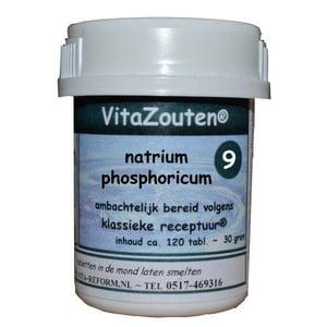 Vitazouten Natrium phosphoricum VitaZout Nr. 09 afbeelding