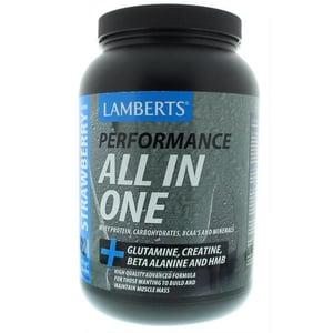 Lamberts All In One Aardbei (Performance) afbeelding