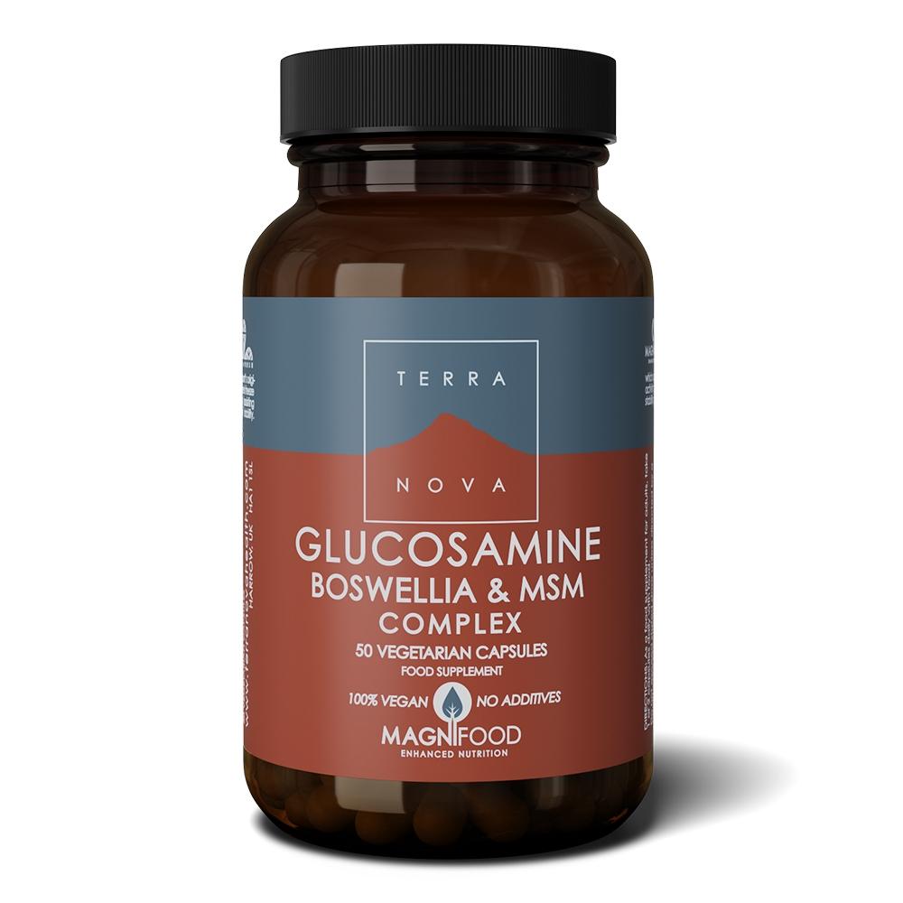 Afbeelding van Terranova Glucosamine boswellia&MSM complex