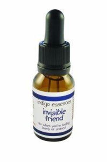 Indigo Essences Invisible friend afbeelding
