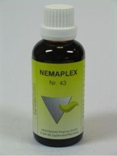 Nestmann Adonis 43 Nemaplex afbeelding