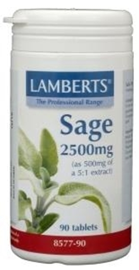 Lamberts Salie (sage) afbeelding