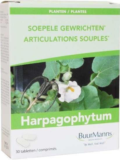Buurmanns Harpagophytum afbeelding