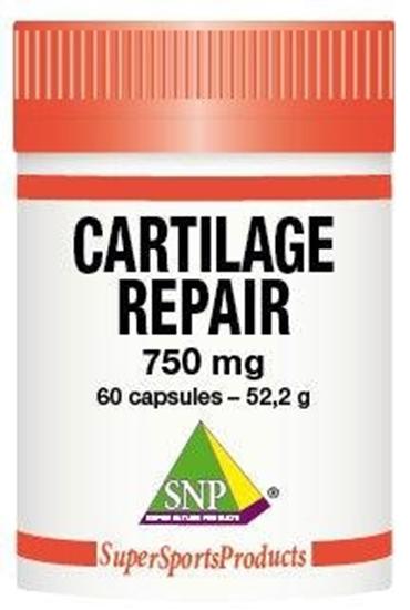 SNP Cartilage repair 750 mg puur afbeelding