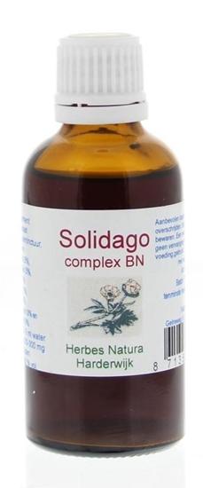 Herbes Natura Solidago complex afbeelding