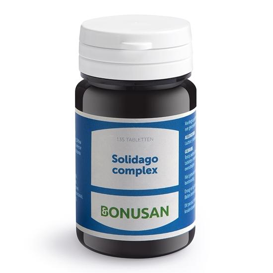 Bonusan Solidago complex afbeelding
