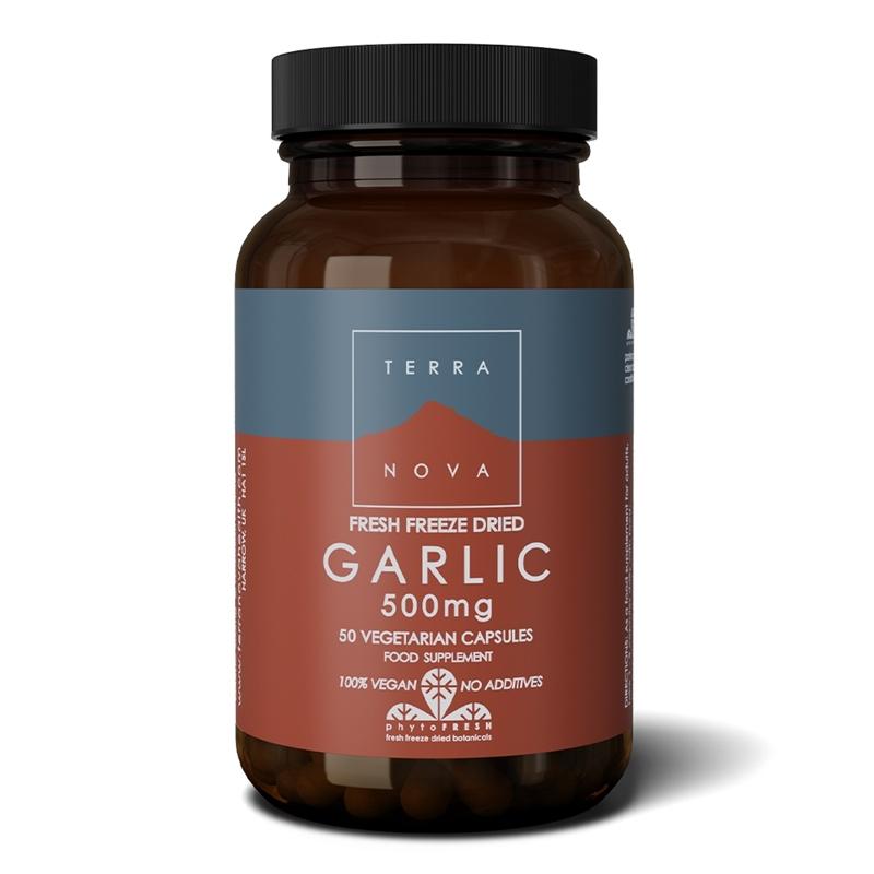 Terranova Garlic 500 mg afbeelding